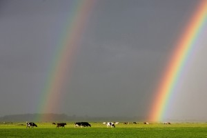dubbele-regenboog